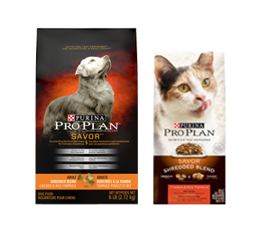 Purina Pro Plan | Nutrition that performs